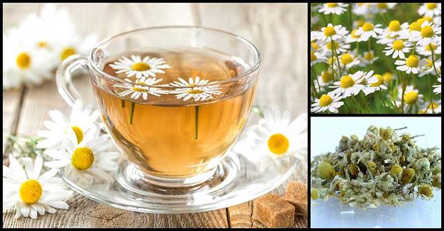 The Goodness Of Manzanilla Tea
