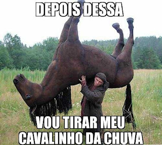 imagens-de-rodeio-frases-rodeio-marco-brasil