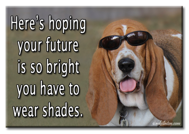 Bentley basset Hound meme Here's hoping your future is so bright you have to wear shades.