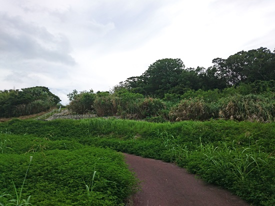 赤石の杜の写真