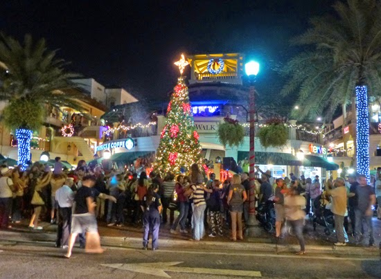 Coconut Grove Grapevine Cocowalk Christmas Tree Lights Up The Night