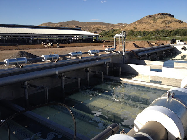 Membrane Bioreactor (MBR) Market