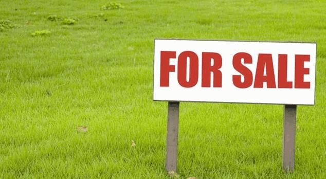 Peluang Usaha Jual Beli Tanah yang Tak Ada Ruginya
