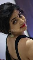 Poonam Kaur Saree New Pics 013.jpg