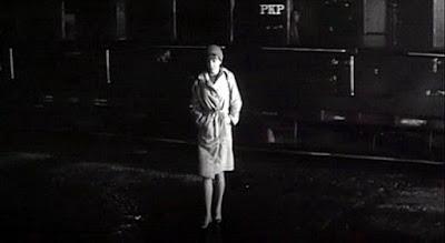 Niekochana (1965)