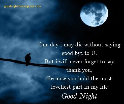 Sweet Good Night Sms To Your Girlfriend