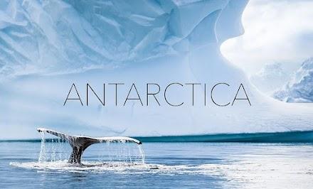 Antarctica | Traumhafte Aufnahmen aus der Arktis von Kalle Ljung als Kurzfilm