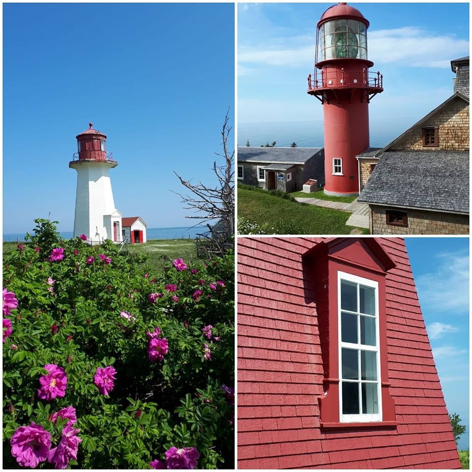 Lighthouses Of Gaspe Pensilula