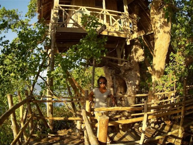 Domek na drzewie, za 200 pesos
