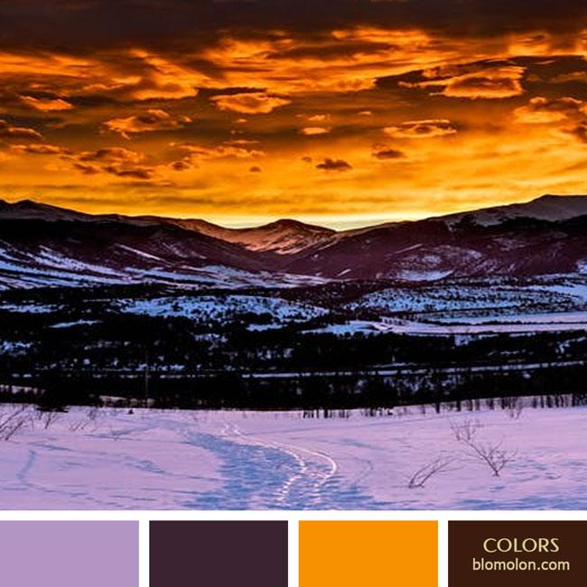 variedad_en_color_color_64
