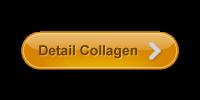 http://produkherbalabe.com/collagen-drink/