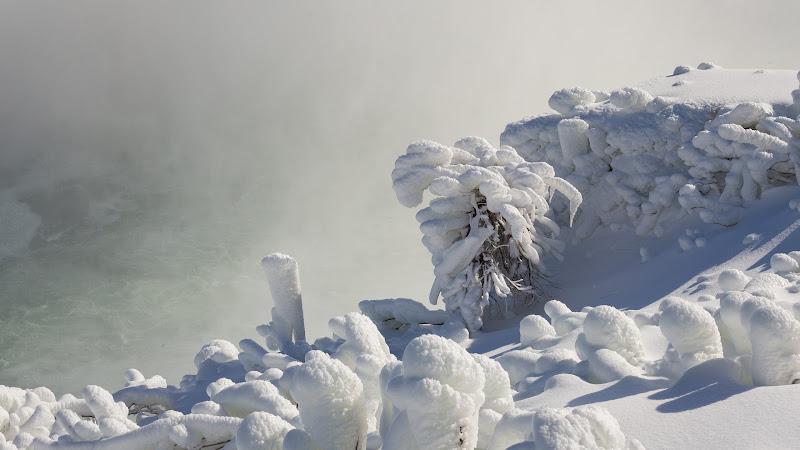 Surreal Winter Scenery