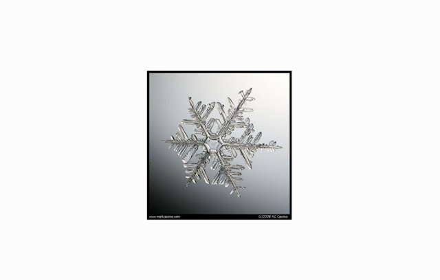 Bentuk Salju Irregular Crystal