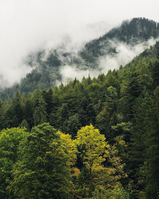 Ruhpolding  - Hörndlwand  Wandern Bayerische Alpen  Wanderung-Ruhpolding  Bergtour-Bayern  Wandern-im-Chiemgau 02