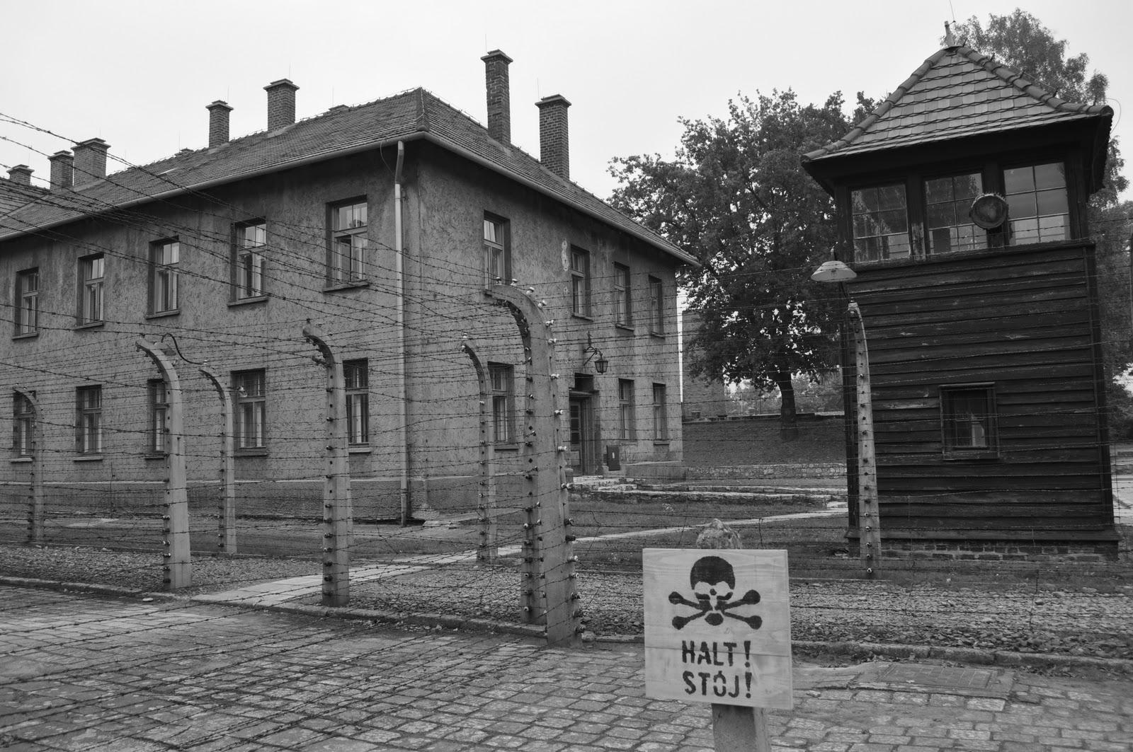Nazi extermination camps