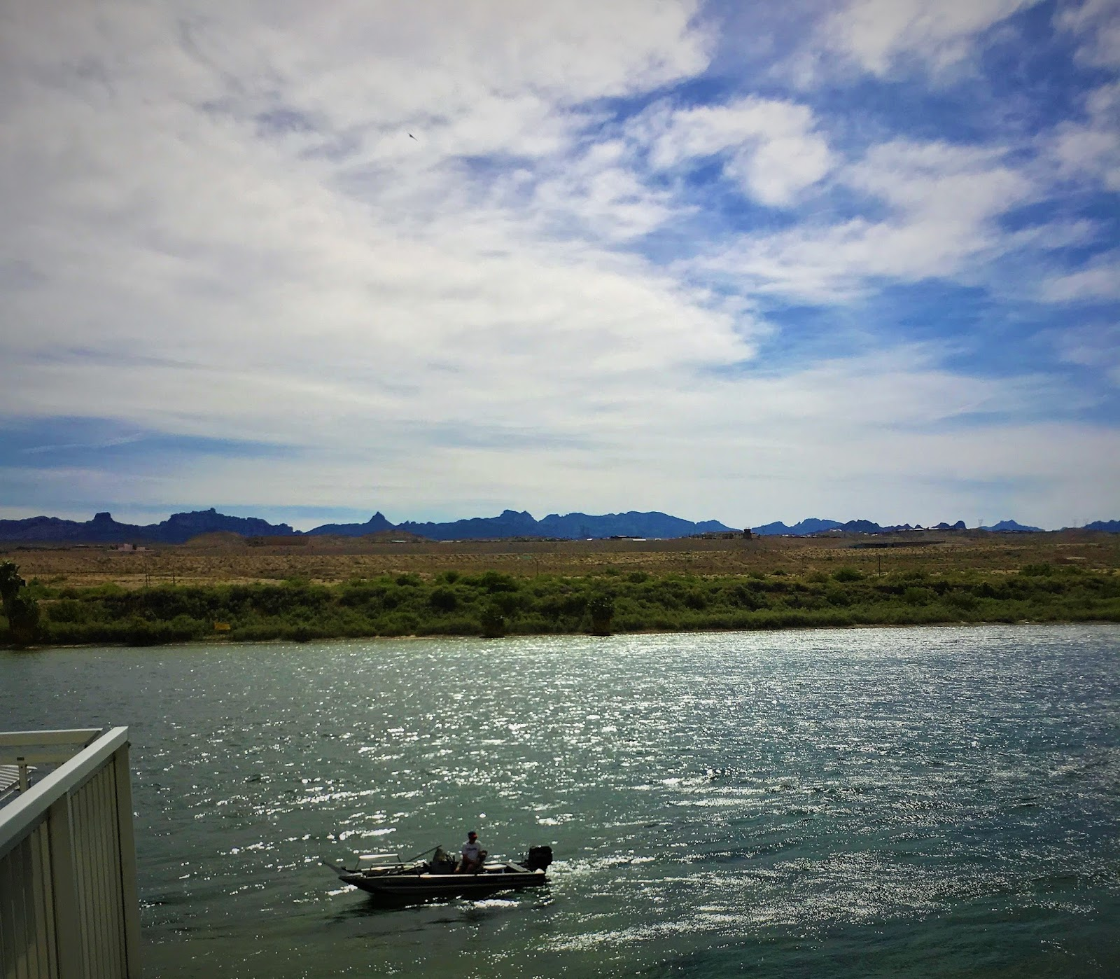 Laughlin buzz southern nevada fishing reports july 2017 for Fishing lake mead from shore