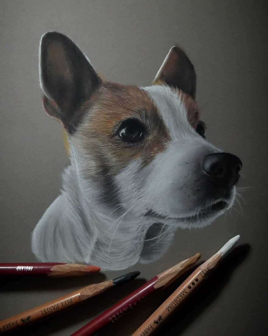 06-Dog-Rene-Lopez-Animal-Pencil-and-Pastel-Portrait-Drawings-www-designstack-co