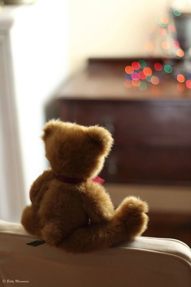teddy bear and christmas bokeh