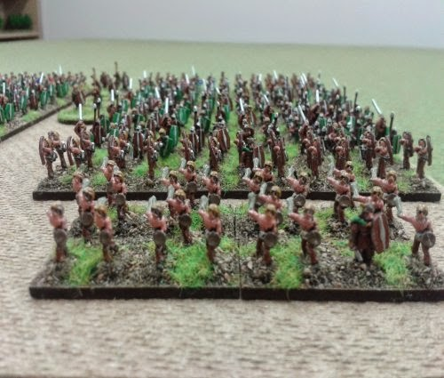 Re-based and touched up my Gallic/Celtic army which i bought of ebay picture 2