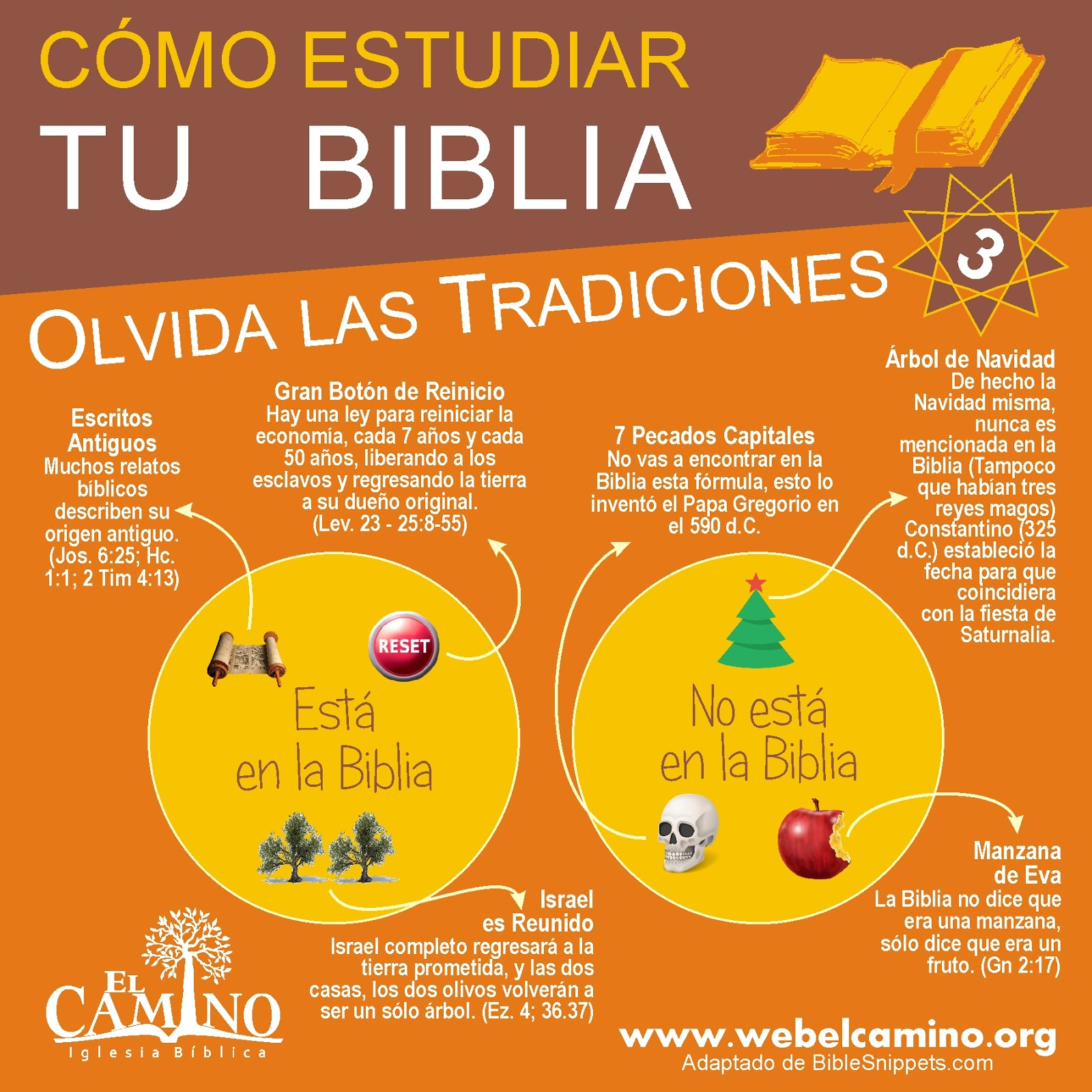22 Ideas De Biblia Biblia Biblia Cristiana Como Leer La Biblia