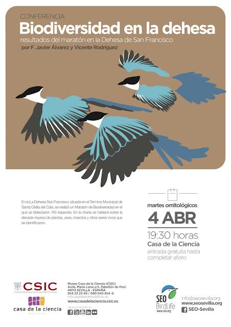 Conferencia: Biodiversidad en la Dehesa. Resultados del maratón en la Dehesa de San Francisco. Por F. Javier Álvarez y Vicente Rodríguez, 4 de Abril 2017. Grupo Local SEO-Sevilla.