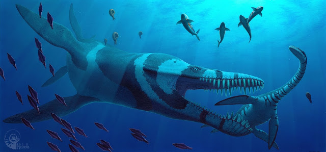 Study uses robot to probe mystery of prehistoric sea creature's swimming style