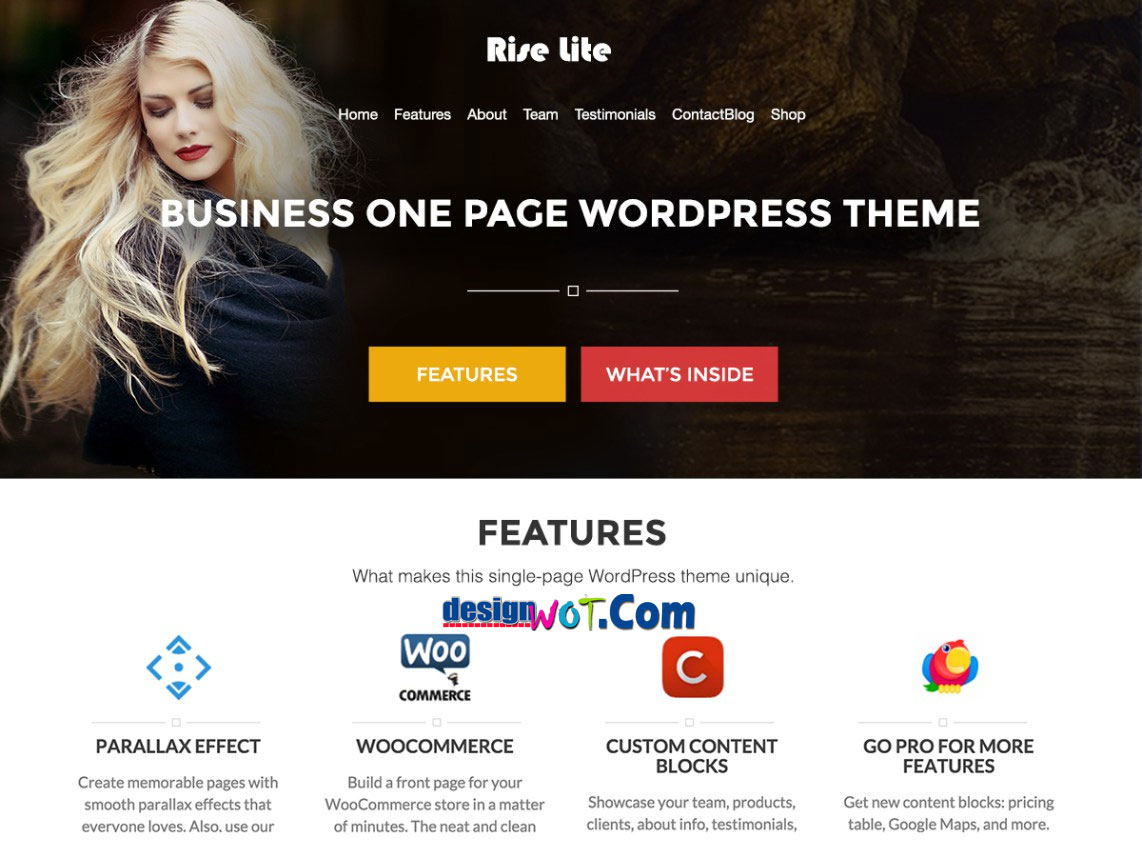 RISE LITE Responsive WordPress Theme