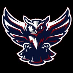 gambar logo burung hantu