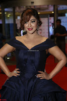 Payal Ghosh aka Harika in Dark Blue Deep Neck Sleeveless Gown at 64th Jio Filmfare Awards South 2017 ~  Exclusive 108.JPG