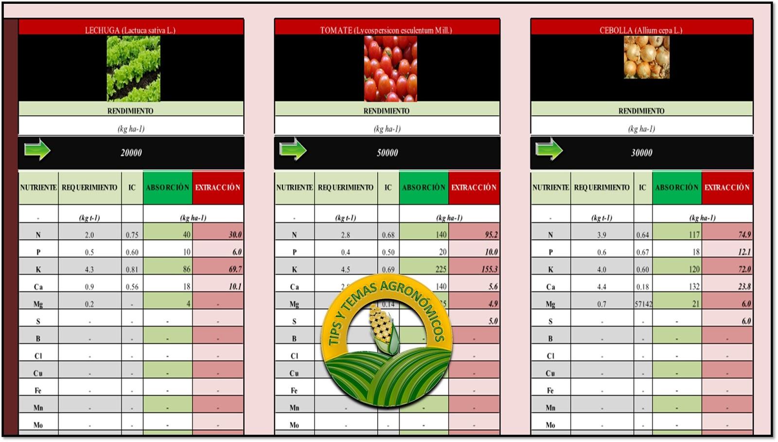 Descarga gratis Plantilla de excel para requerimientos nutricionales ...