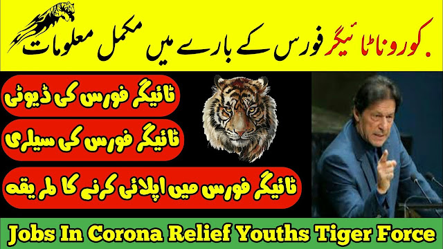 Registration for PM's Corona Relief Tigers to begin on March 31, Registration for 'Corona Relief Tiger Force' to start from today, Corona Relief Tiger Force Jobs 2020 - Tiger Force,PM Imran to launch registration of 'Corona Relief Tiger Force,'Corona Relief Tigers Force' registration starts by,Registration for Corona Relief Tigers force, How to join PM's 'Corona Relief Tigers Force'? , Corona Relief Tiger Force Registration | 2020 - Today Jobs, 32,000 youth registered with Coronavirus Relief Tiger Force