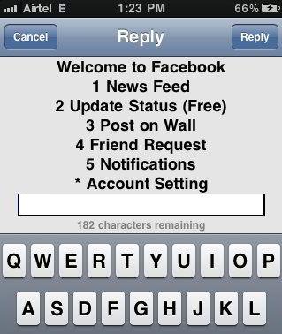 Facebook option screen *325# or *fbk#