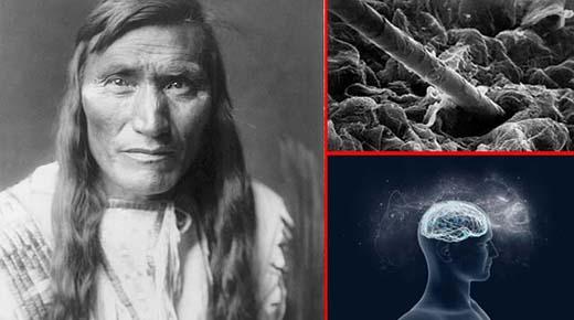 El cabello es una extensión del sistema nervioso: por qué los indios mantienen el cabello largo