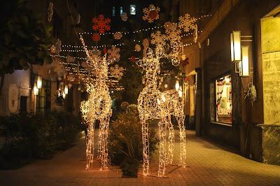 """The reindeers in Kodak Passaway """"ABn'G"""""""