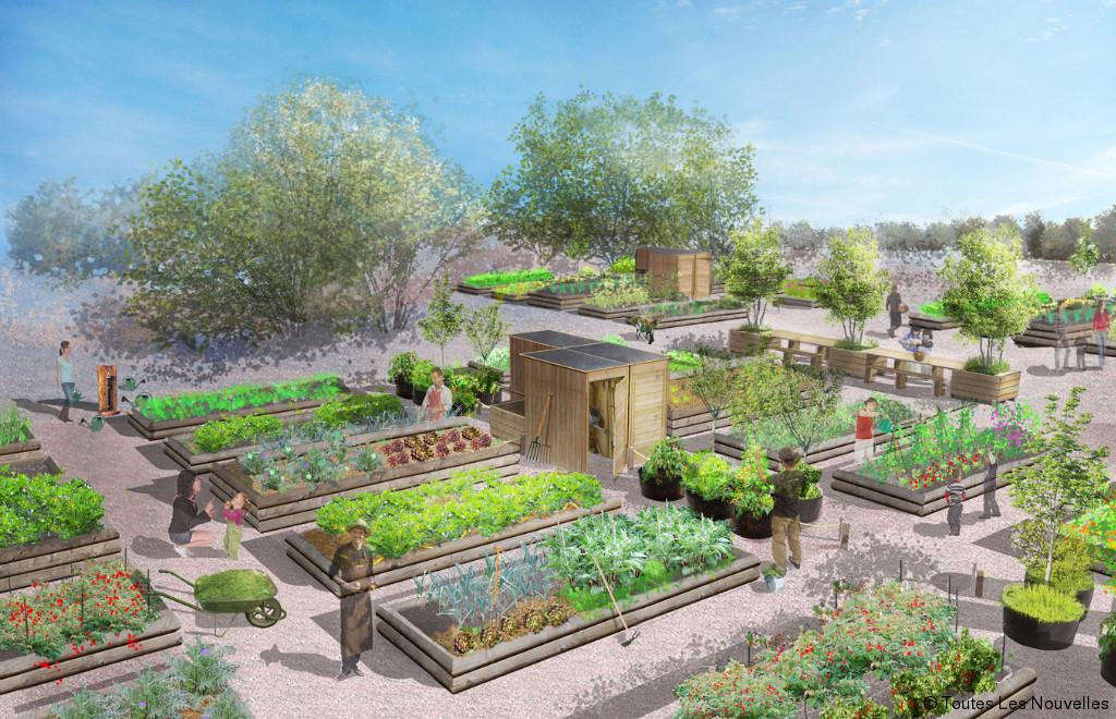 Alalumieredunouveaumonde vadez vous des grandes villes en louant votre potager - Jardin potager bio saint denis ...