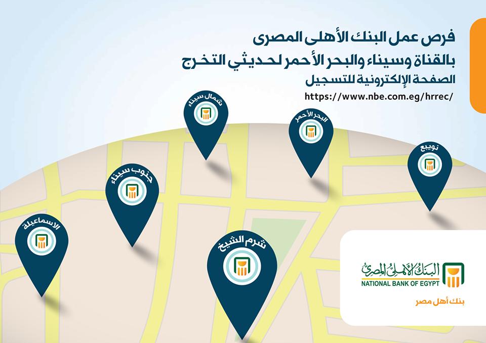 وظائف البنك الاهلى المصرى لحديثى التخرج بجميع المحافظات - التقديم على الانترنت بالخطوات هنا