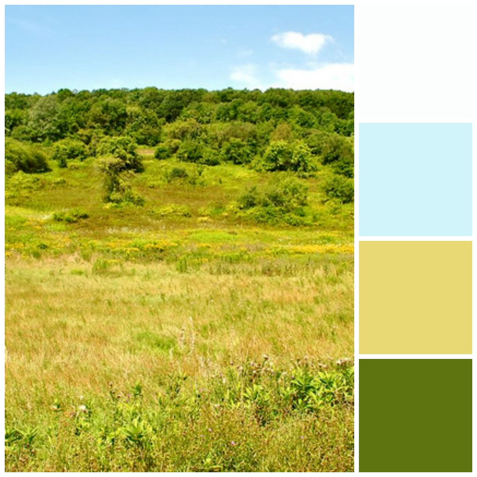 Tender Arts Studio: New Home Color Palettes