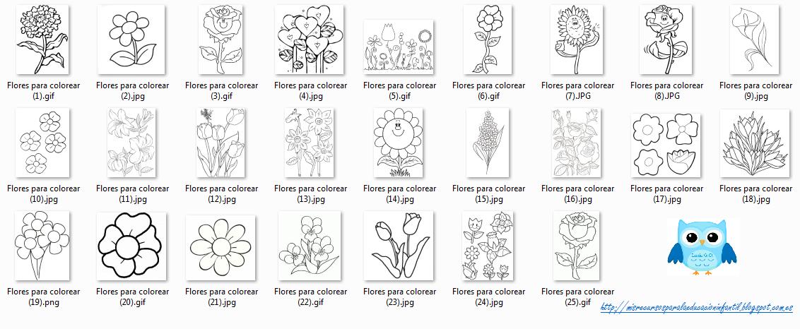 Play Learn Flores Para Colorear