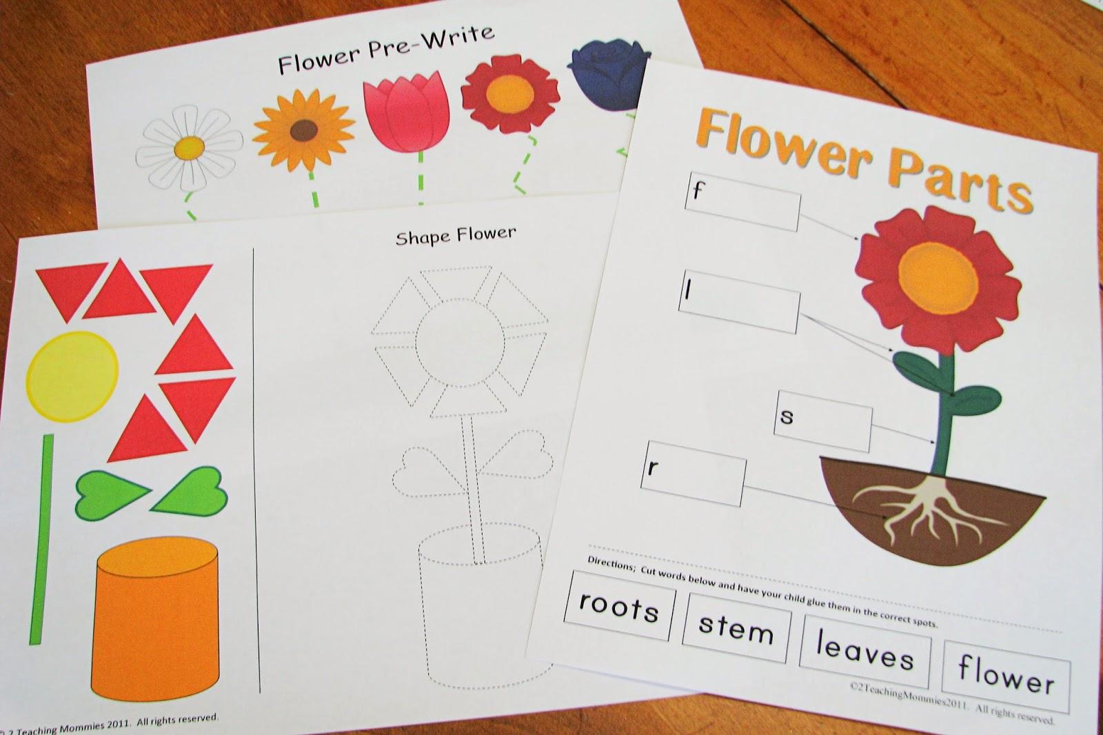 Mommy S Little Helper Flower Preschool Theme
