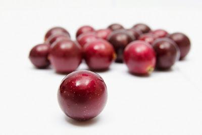 Anggur Muscadine Di Dalam Vivix