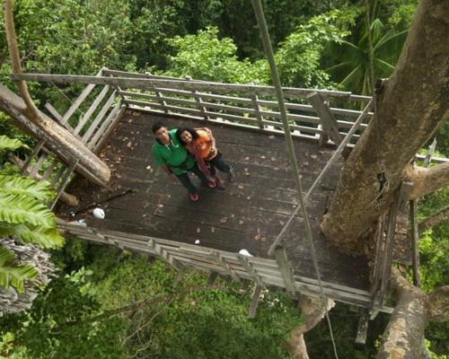 Tinuku Travel Manusela National Park on Seram island climb Mount Bunaya, watching animals in forest then diving in sea
