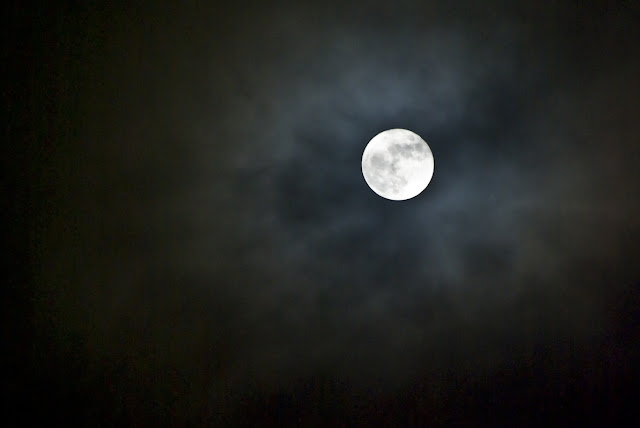 Full Moon Viliam Glazduri Nature Spots Ottawa
