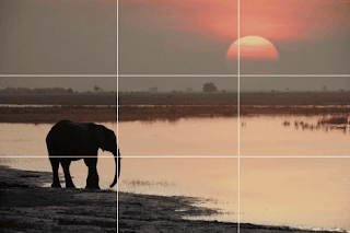 real example of rule of thirds in photography