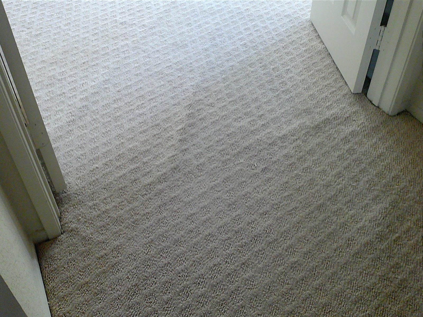 Oh My God my carpet has ripples!
