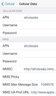 GIV Mobile APN Settings for iPhone