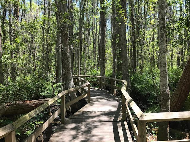 Gatorland, Orlando, Florida