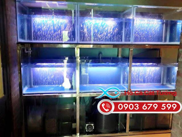 Loại hồ hải sản bằng kính được Cát Tường thiết kế tại TP Vũng Tàu