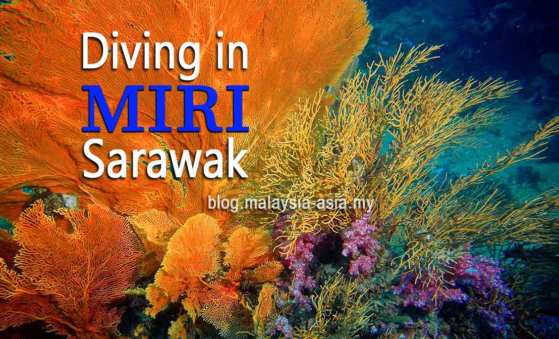Diving in Miri Sarawak