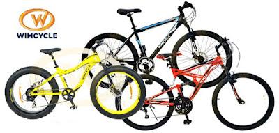 Sepeda Gunung Terbaik dengan Harga Murah
