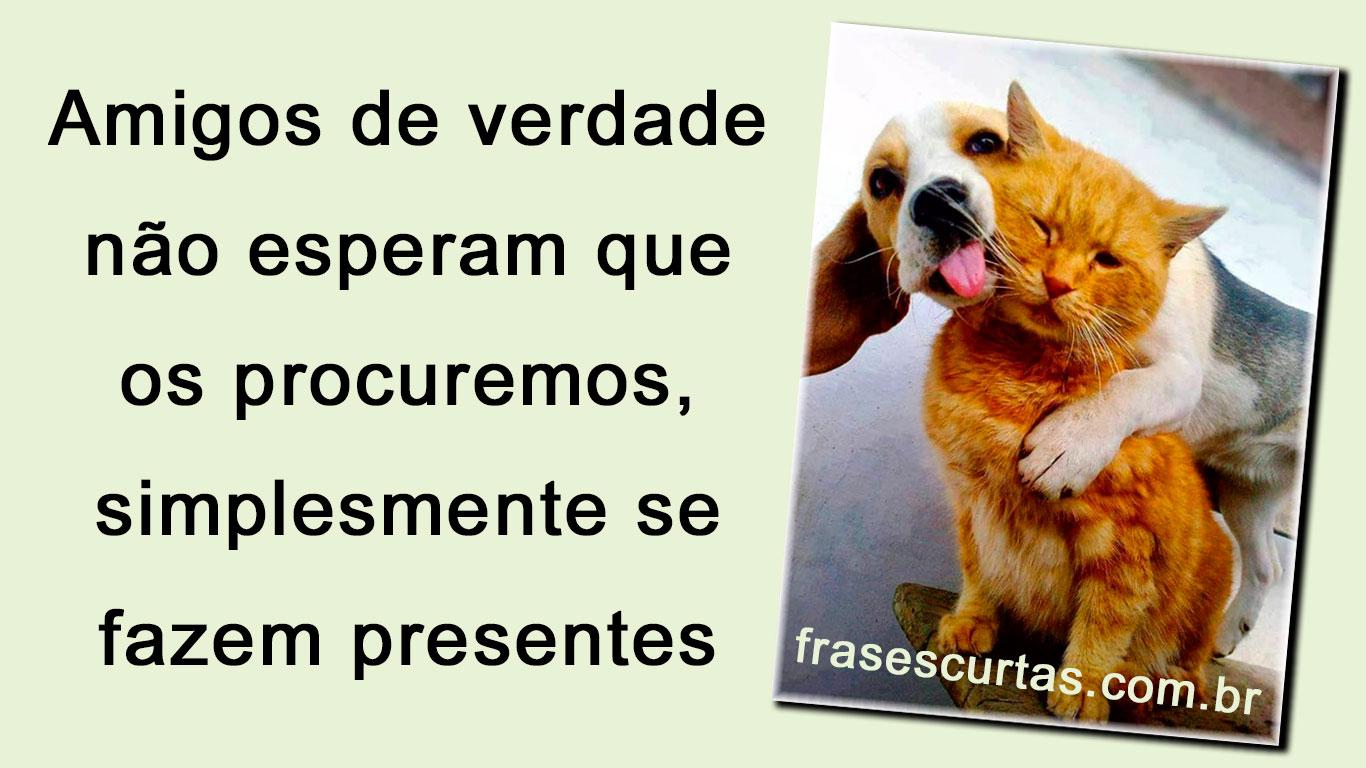 Amizade Frases De Amigos De Verdade Frases Curtas